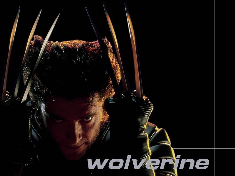 The x men wolverine wallpaper 800x600 wolverine the x men voltagebd Images